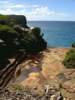 Royal NP Coast Walk