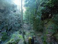Epic canyoning fail … but a great walk on the Colo River to Wollemi Creek