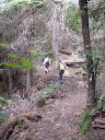 Furbers Steps to Ruined Castle, Katoomba